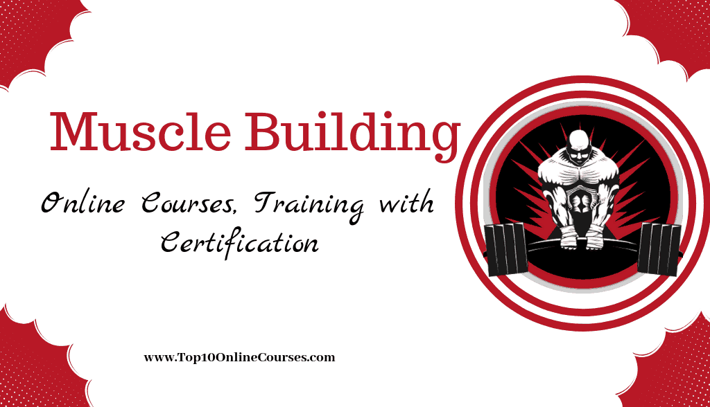 Muscle Building Online Courses & Training