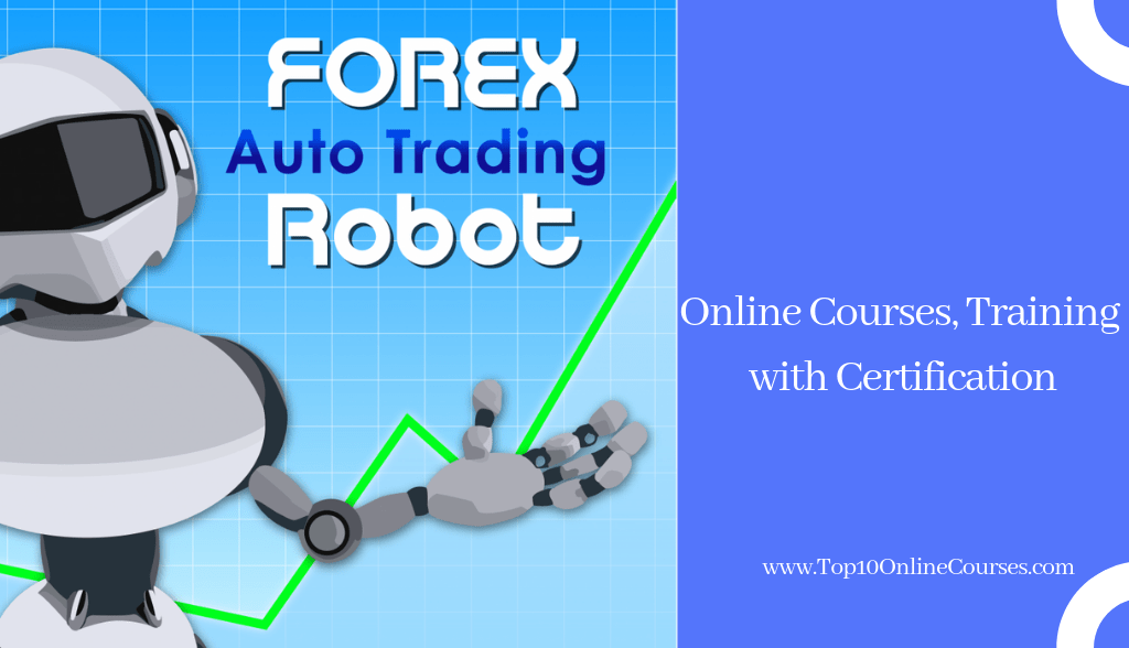 Free forex trading training